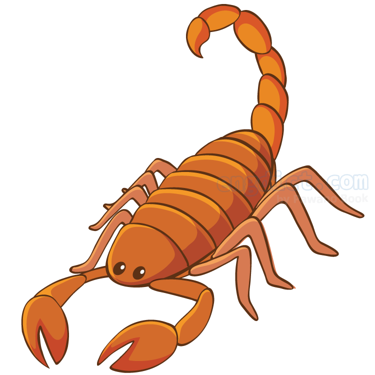 scorpion แปลว่า แมงป่อง