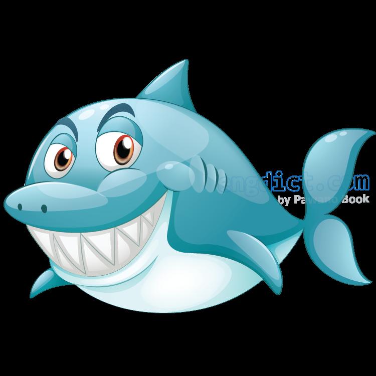 shark แปลว่า ปลาฉลาม