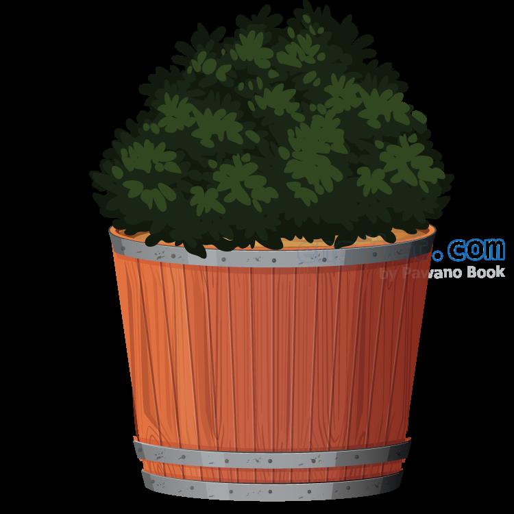 shrub แปลว่า ต้นไม้ขนาดเล็ก,ไม้พุ่ม