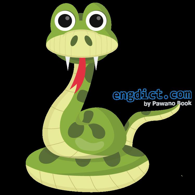 snake แปลว่า งู