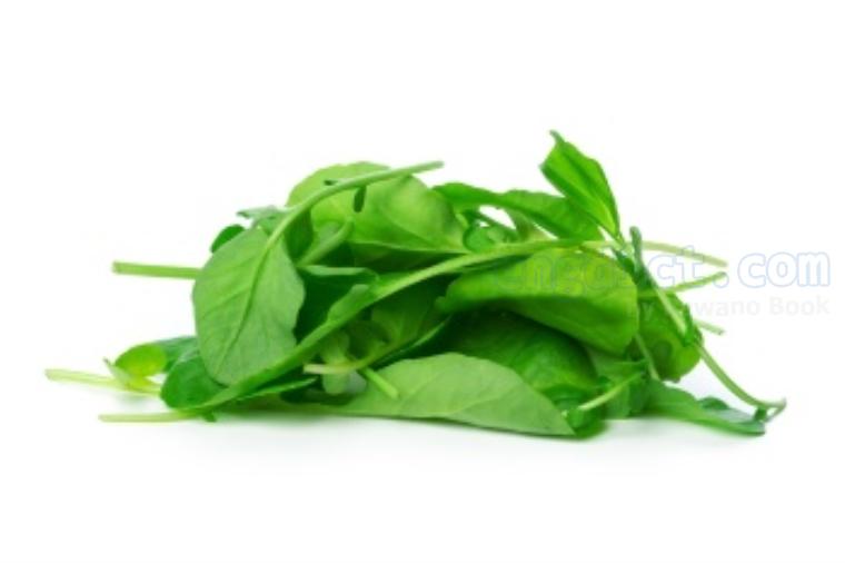 spinach แปลว่า ผักขม