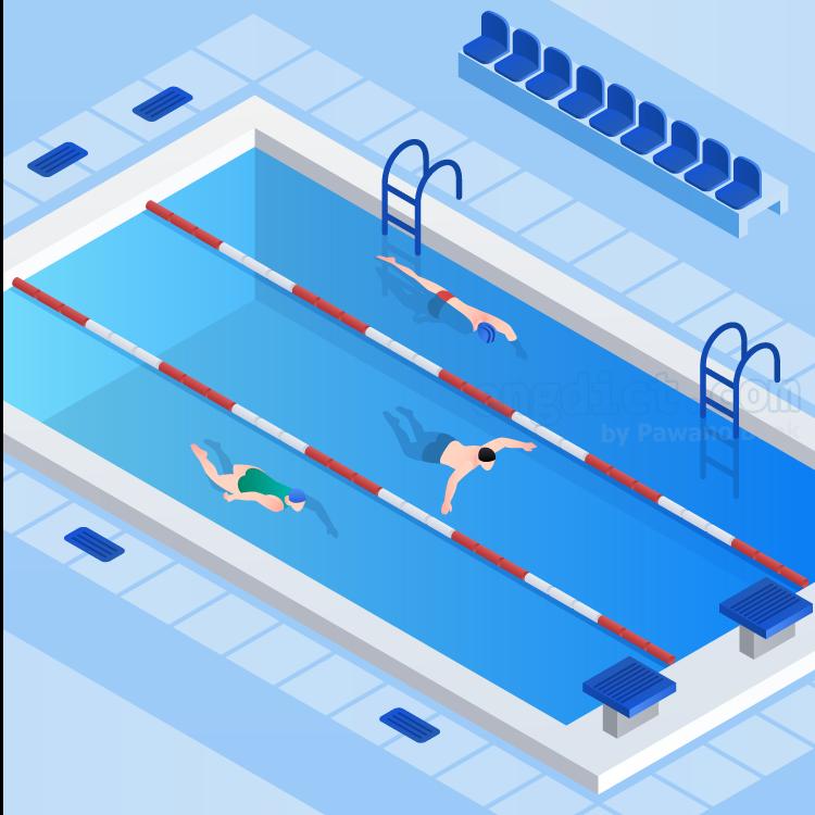 sport swimming แปลว่า สนามว่ายน้ำ