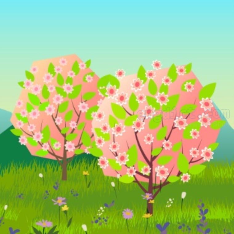 spring แปลว่า ใบไม้ผลิ