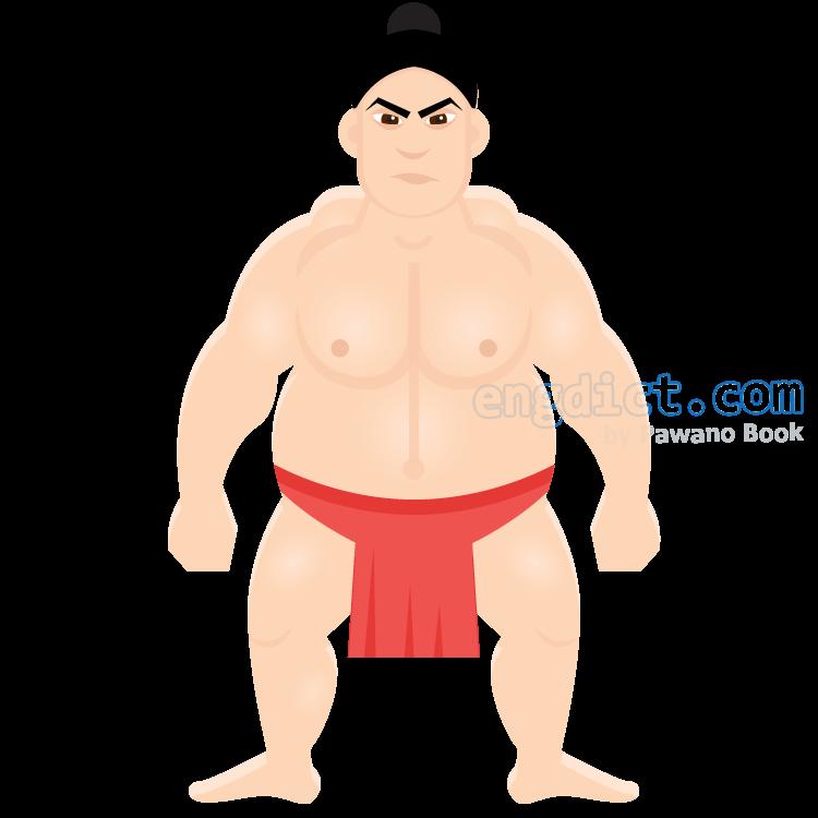 sumo แปลว่า กีฬาซูโม่