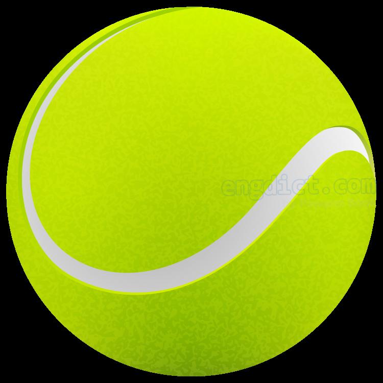 tennis ball แปลว่า ลูกเทนนิส