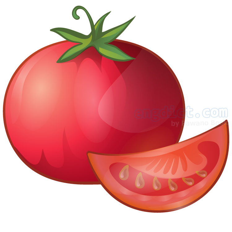 tomato แปลว่า มะเขือเทศ