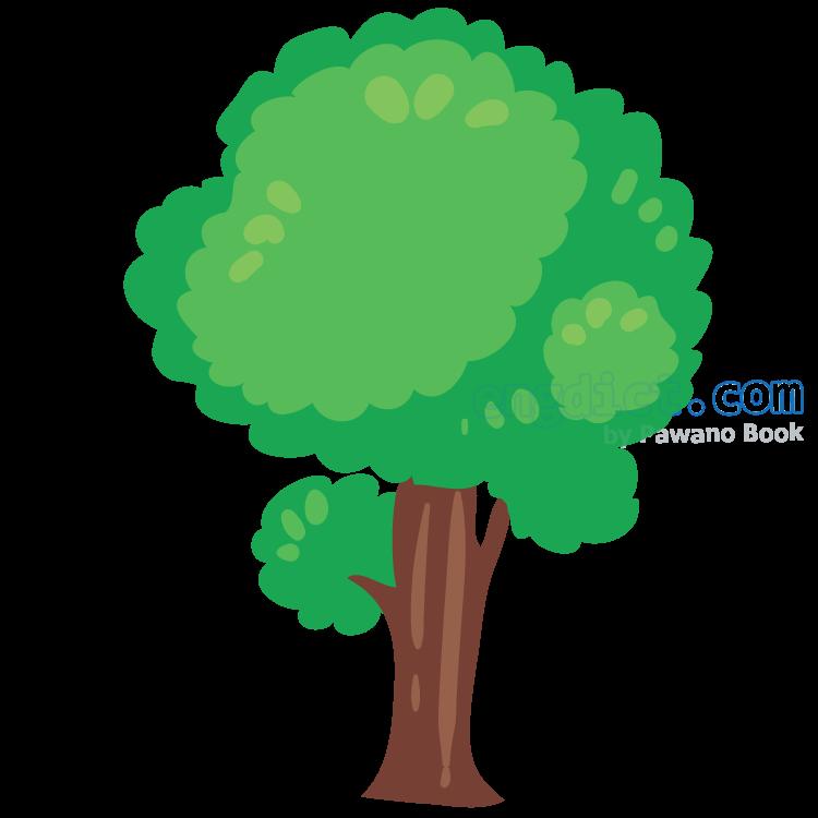 tree แปลว่า ต้นไม้