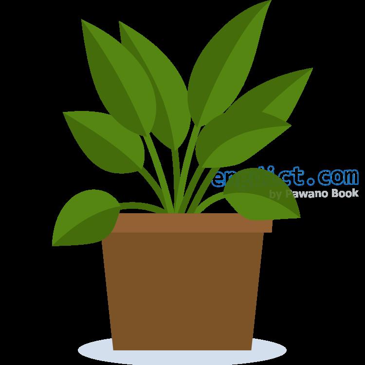vegetation แปลว่า พืช