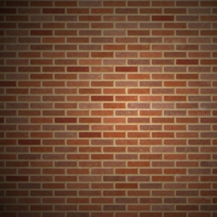 wall แปลว่า กำแพง