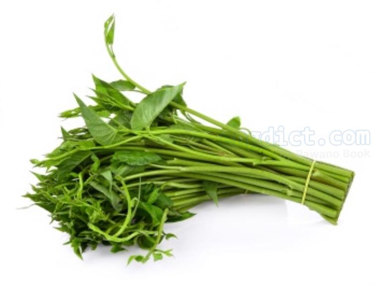 water spinach แปลว่า ผักบุ้ง