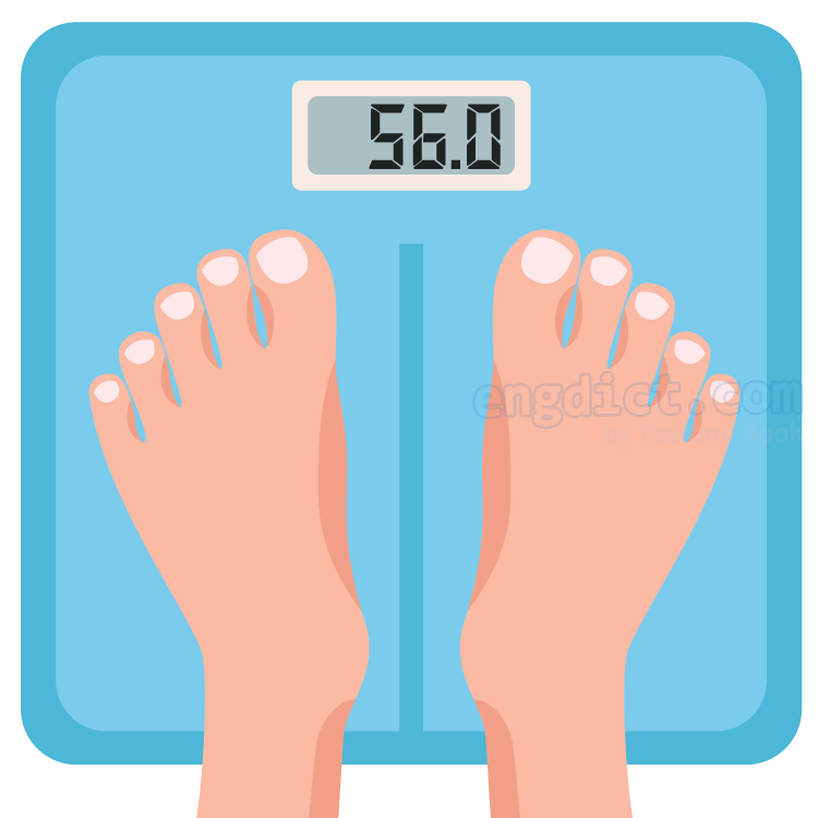 weight แปลว่า น้ำหนัก