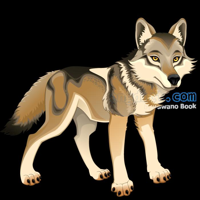 wolf แปลว่า หมาป่า