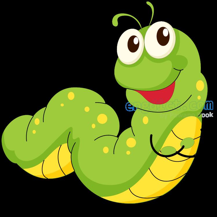 worm แปลว่า หนอน