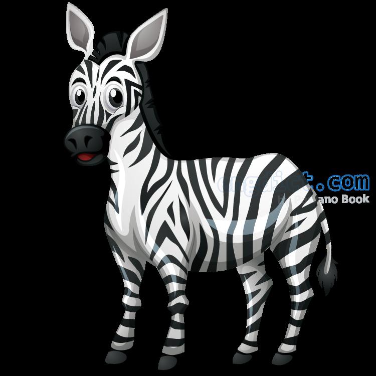 zebra แปลว่า ม้าลาย